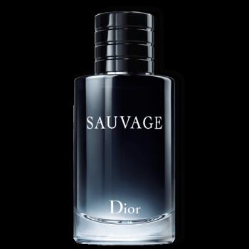 imagem Sauvage Dior Eau de Toilette
